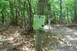 H230604 1058 標識7 銚子岳への分岐