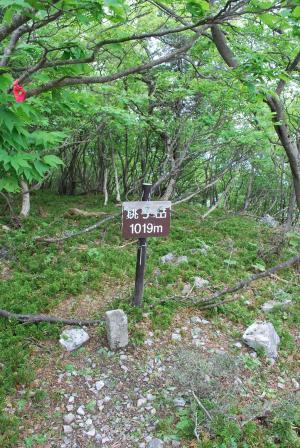 H230604 1102 銚子岳山頂