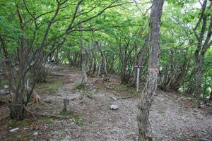 H230604 1108 銚子岳への分岐に戻り再び縦走路へ