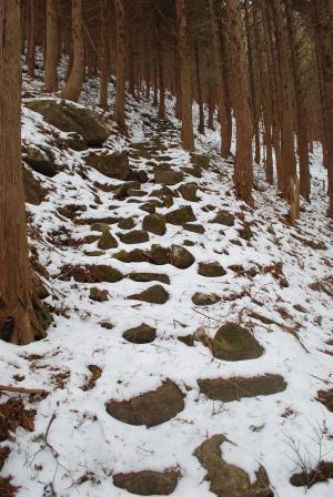 H240115 1218 雪の積もる石段
