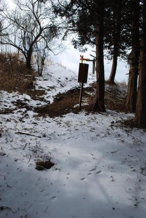 H240115 1230 あっという間に山頂付近の尾根取り付き
