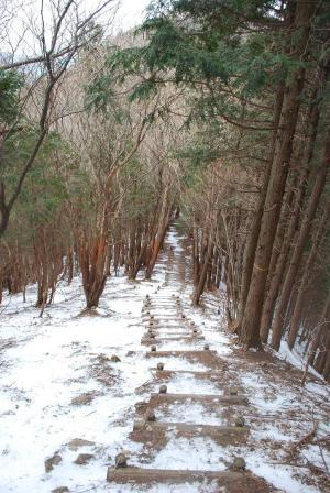 H240115 1235 雄岳への縦走路の階段