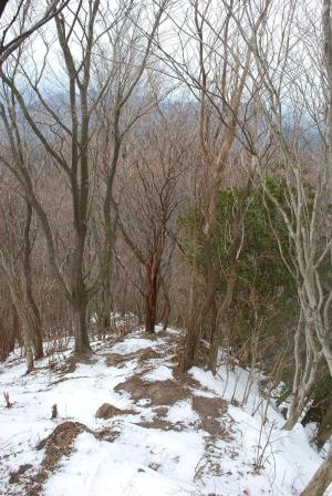H240115 1327 尼ヶ岳方面への縦走路