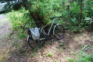 H240811 0911 登山口までは自転車でアプローチ