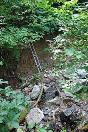 H240811 0927 沢が荒れて梯子で道をつなぐ