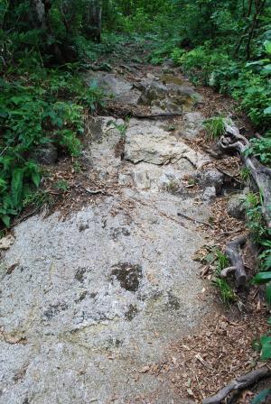H240811 1016 岩も出てきます