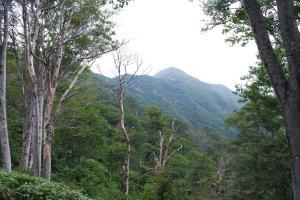 H240811 1023 大源太山が見えました