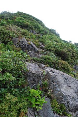 H240811 1114 岩をよじ登っていく