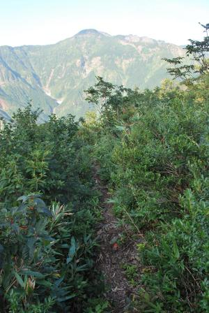 H240908 0737 八海山の入道岳を振り返って望む