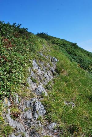 H240908 0921岩もちょっとあります
