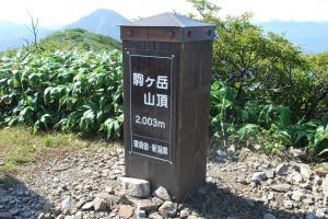 H240908 0930 越後駒ヶ岳山頂