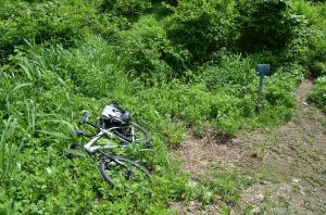 H250623 0948 六十里越からの登山口までは大白川駅から自転車で55分 準備に15分 出発遅いですがこれでも始発で来ました