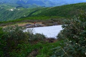 H250623 1325 桜曽根コースなどとの分岐は積雪多し